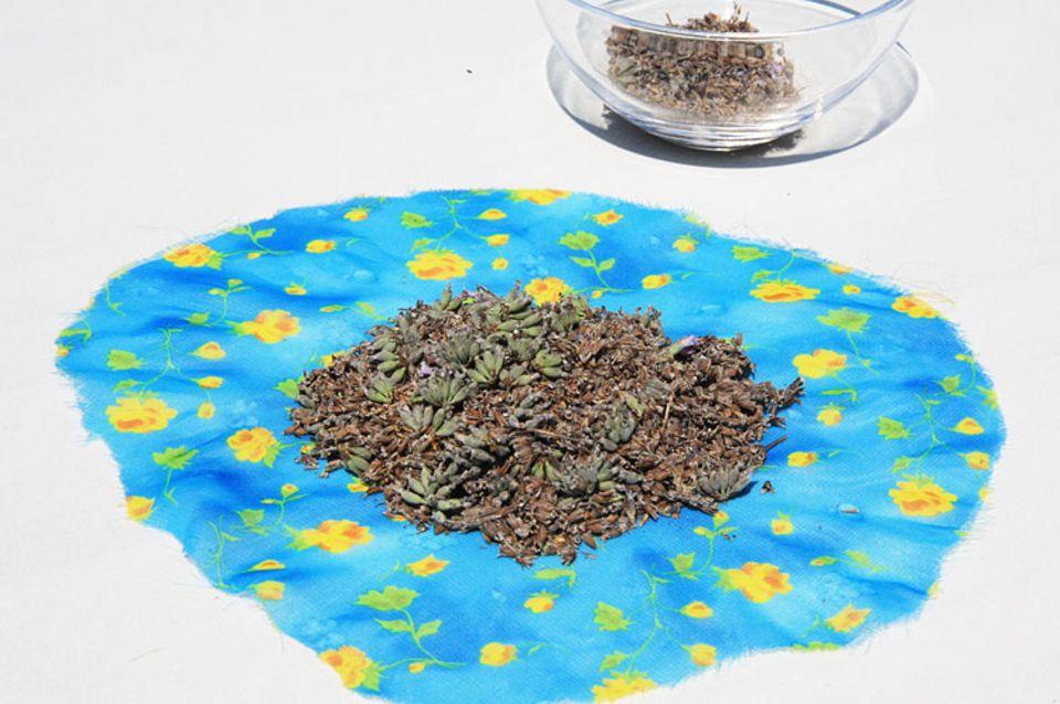Tipps und Tricks: Lavendelblüten in die Mitte eines Stoffstücks geben
