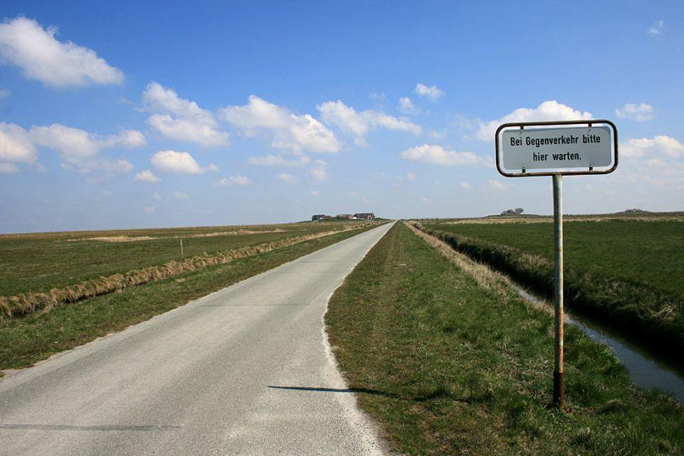 Naturtalente: Viel Verkehr gibt es auf Langeneß nicht - da reichen einspurige Straßen
