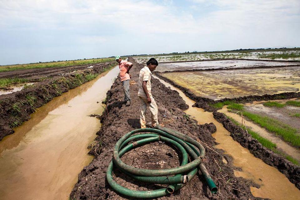 Äthiopien: Der Unternehmer Karuturi will die Feuchtgebiete kanalisieren und eindeichen. Zum Be- und Entwässern darf der Fluss Baro genutzt werden