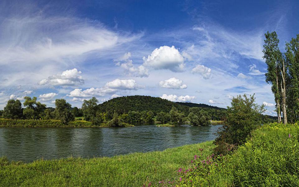 Umweltschutz: Sensibles Ökosystem: die Auen an der Mündung der Isar in die Donau