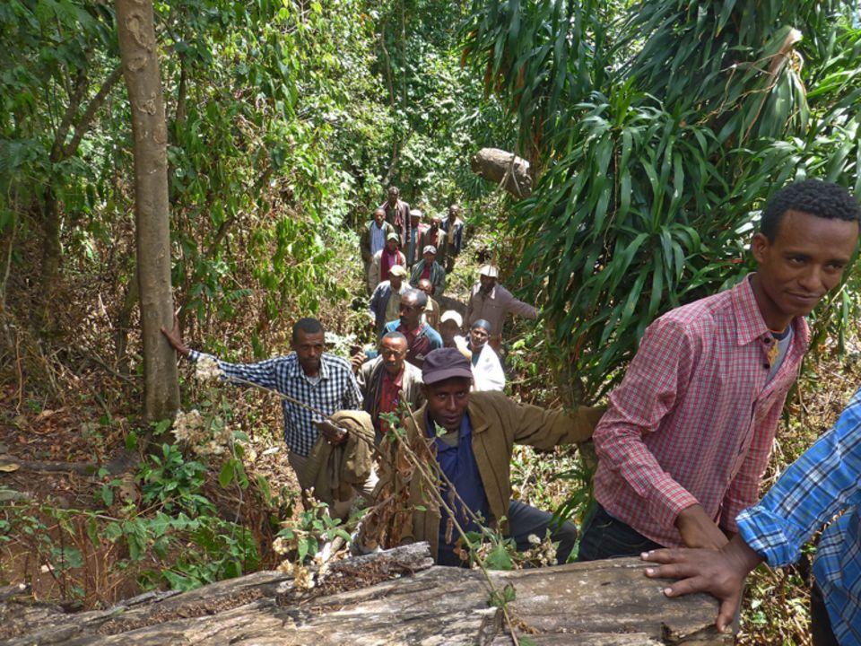 Mitglieder der PFM-Gruppe Addis Berhan bei der Begehung des von ihnen genutzten und geschützten Waldgebiets