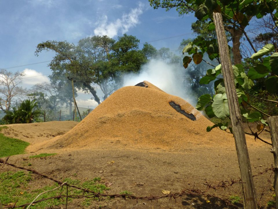 Dieser Berg von Kaffeeabfällen kokelt neben dem Kaffeeschälzentrum von Bonga vor sich hin