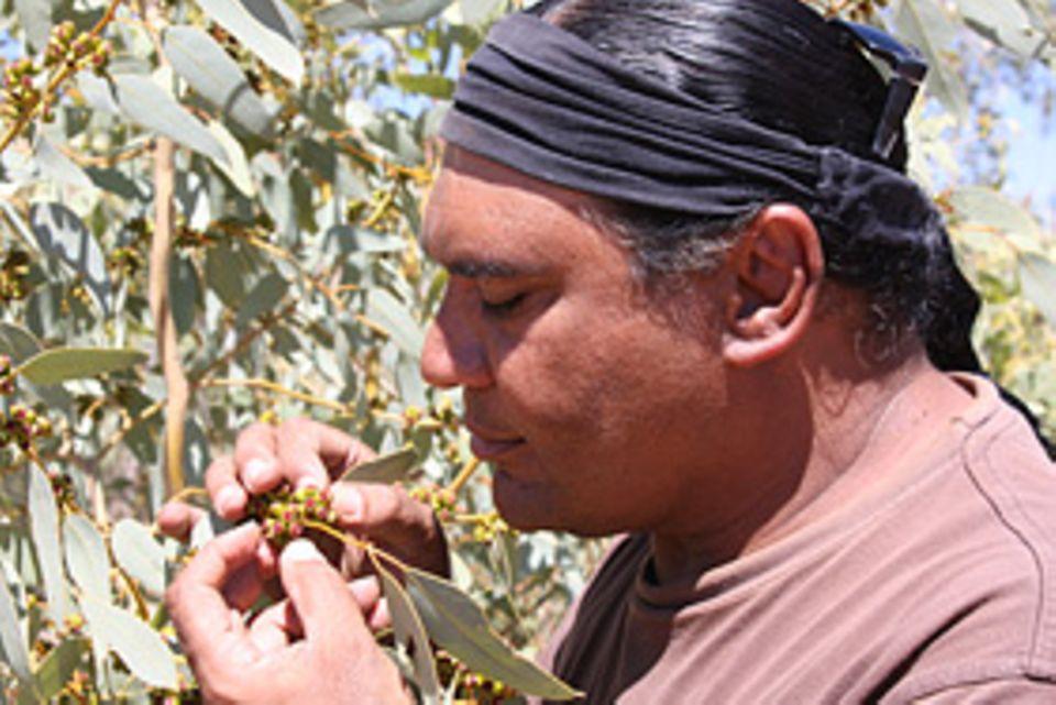 Der australische Spitzenkoch Mark Olive will seine Landsleute für den Geschmack der einheimischen Küche begeistern