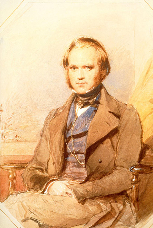 Weltveränderer: Der Naturwissenschaftler Charles Darwin machte seine wichtigsten Entdeckungen auf der Schiffsreise mit der HMS Beagle