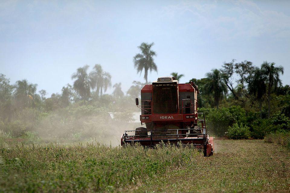 Ressourcenverbrauch: Europas großer Landhunger