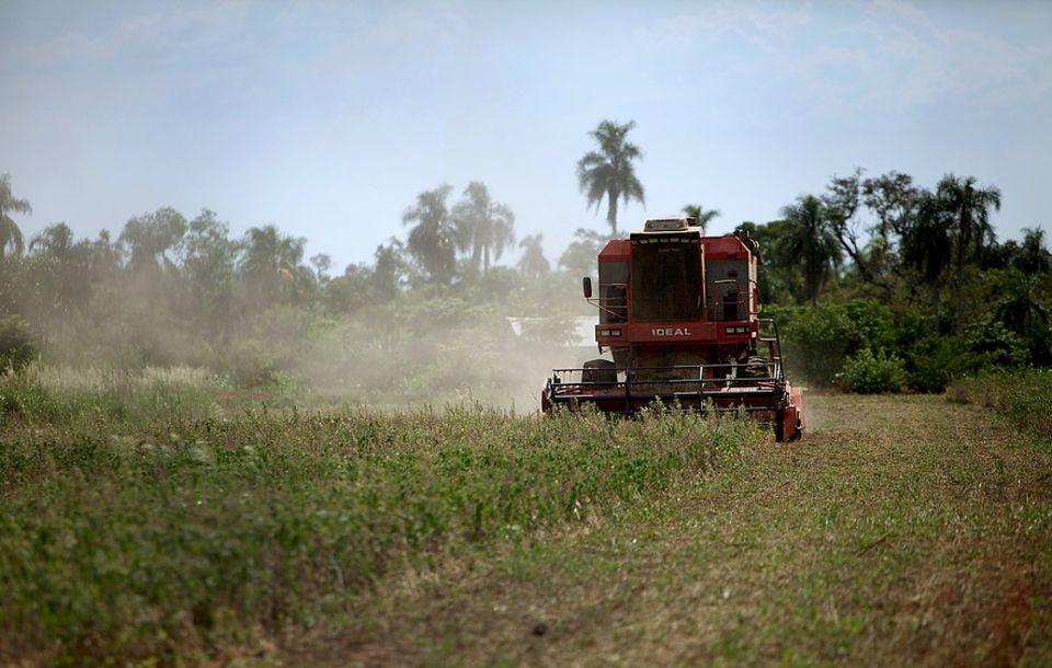 Ressourcenverbrauch: In den vergangenen 30 Jahren haben sich die Soja-Anbauflächen in Paraguay verfünffacht - auf Kosten des Regenwaldes. Die Soja-Pflanzen: gentechnisch verändert. Wichtigster Abnehmer: die EU