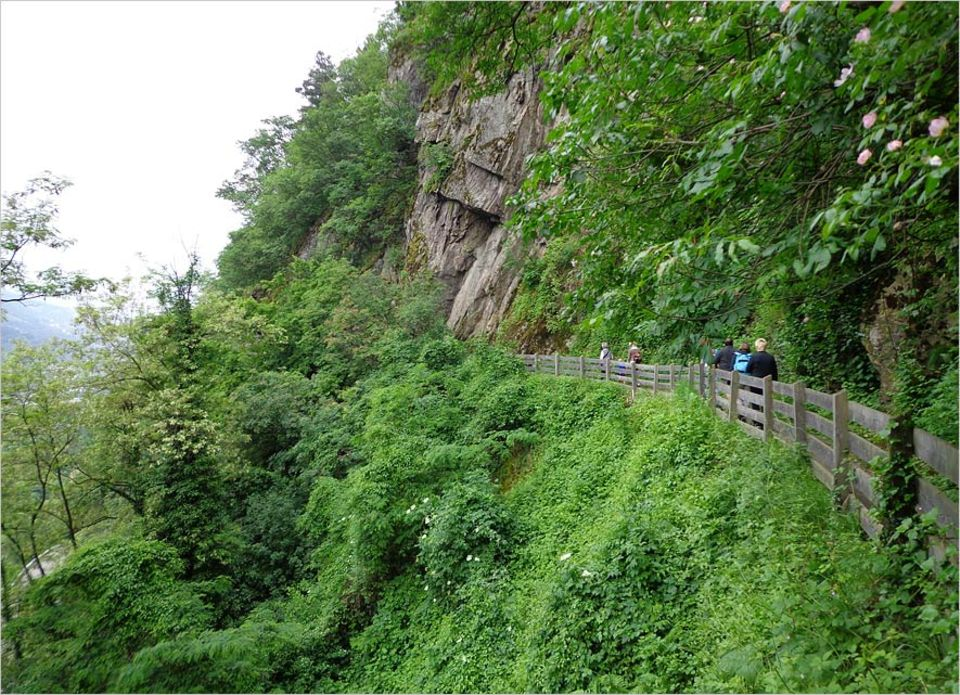 Wandern in Südtirol: Den Marlinger Waalweg schaffen auch Wanderanfänger gut in ein paar Stunden