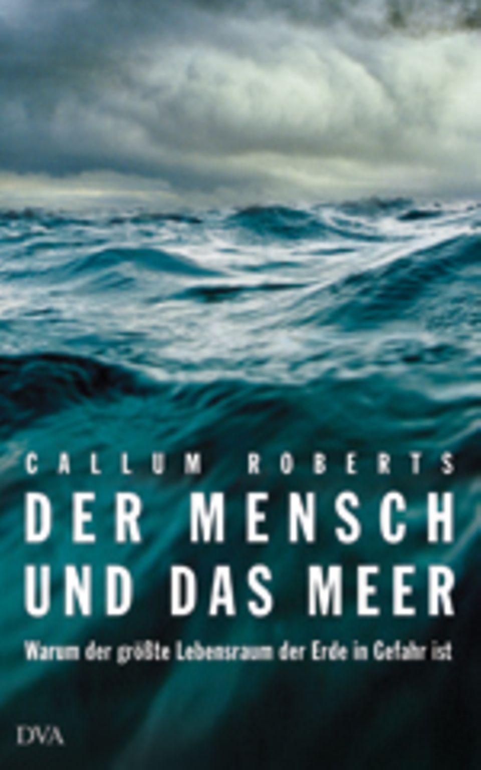 """MEERESSCHUTZ: Der Mensch und das Meer: """"Noch ist es nicht zu spät"""""""