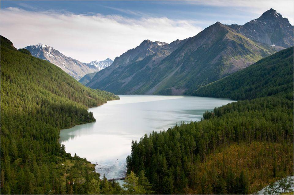 Klimawandel: Rund um den Kucherla-See im Altai-Gebirge wird es immer grüner. 77 Gletscher sind schon völlig abgeschmolzen