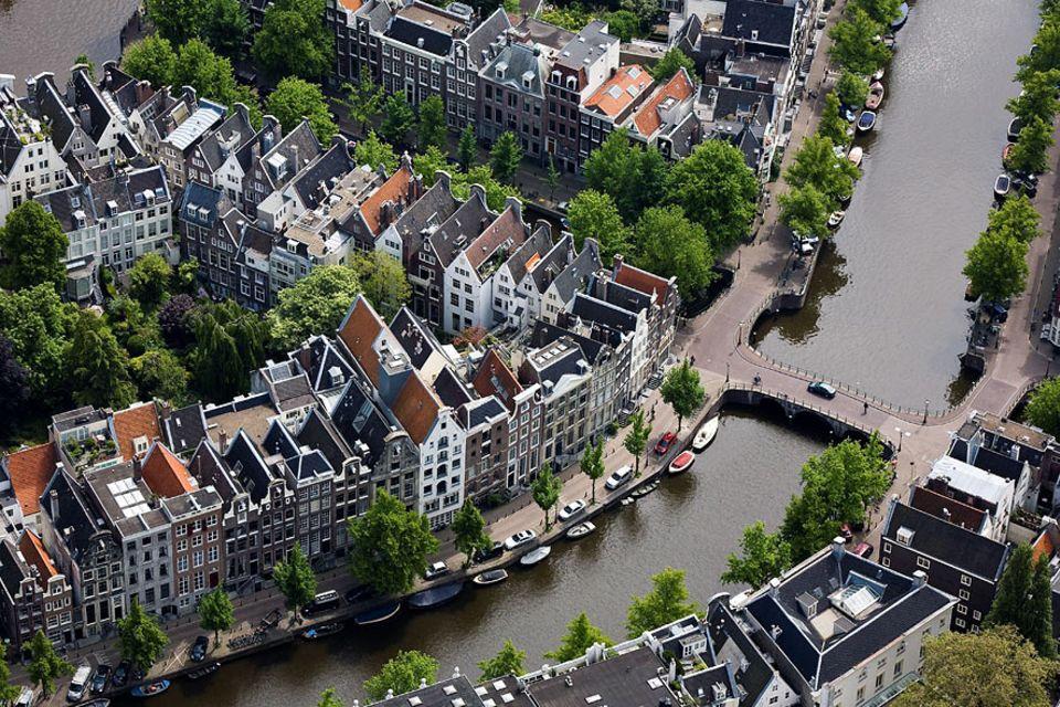 Interview: Das Amsterdamer Netz aus Grachten und Grünstreifen bietet zahlreichen Pflanzen- und Tierarten Unterschlupf