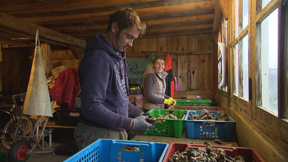 Trotz der großen Konkurrenz unter den Austernfarmern wagen immer wieder neue Züchter den Sprung ins Geschäftsleben, wie Hoki Olhagaray und Mathieu Perucho