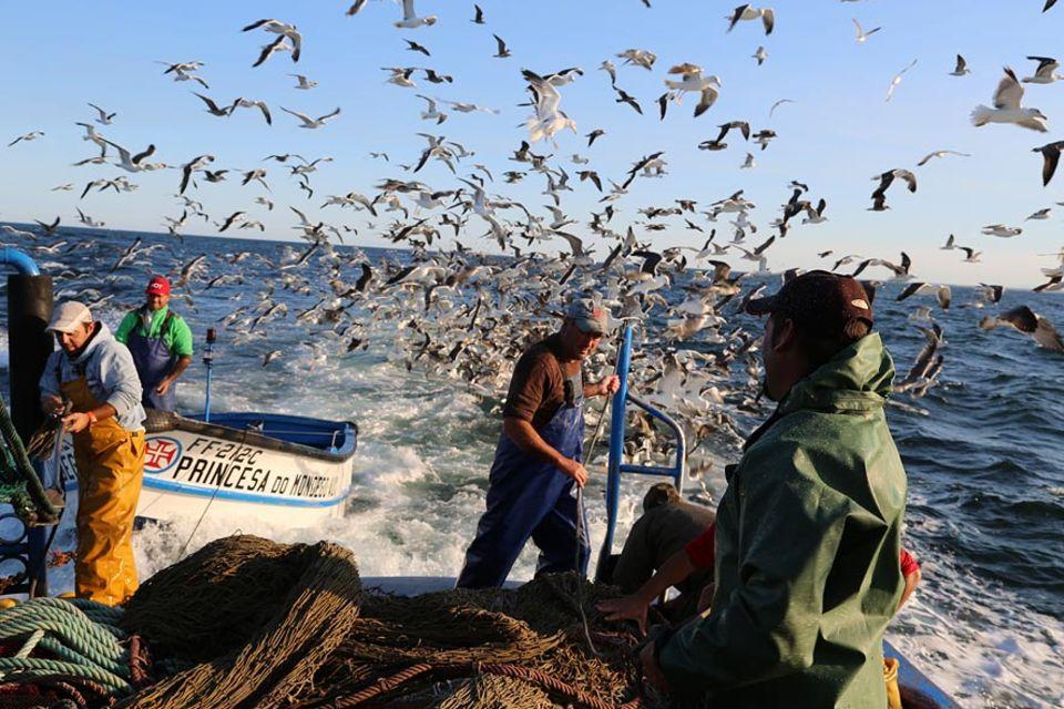 """Die """"Princesa do Mondego"""" auf Fischfang vor der Küste von Figueira da Foz"""