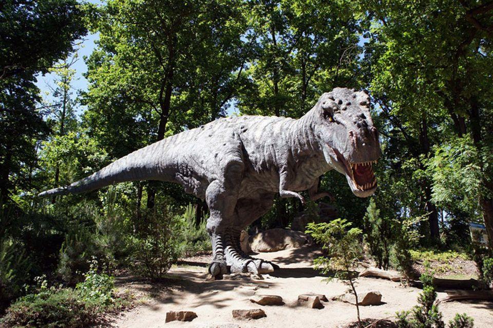 Tierlexikon: Der Tyrannosaurus Rex ist wohl der bekannteste Dinosaurier