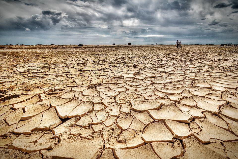 """Klimareport: """"Häufiger 40 Grad und darüber"""""""