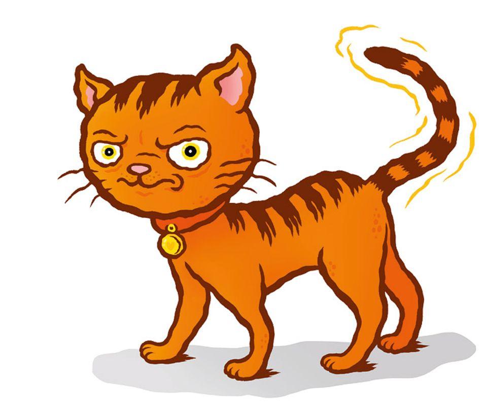 Tiersprache: Anders als Hunde drücken Katzen mit Schwanzwedeln weder Freude noch Aufregung aus. Vielmehr beäugen sie etwas mit Widerwillen, zum Beispiel ungebetene Gäste