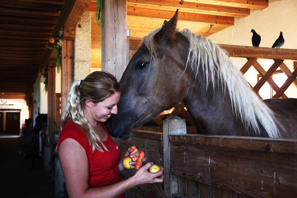 Pferdewirtin Martina Neureiter kümmert sich besonders liebevoll um Neuankömmlinge, wie Schlachtpferd Therese
