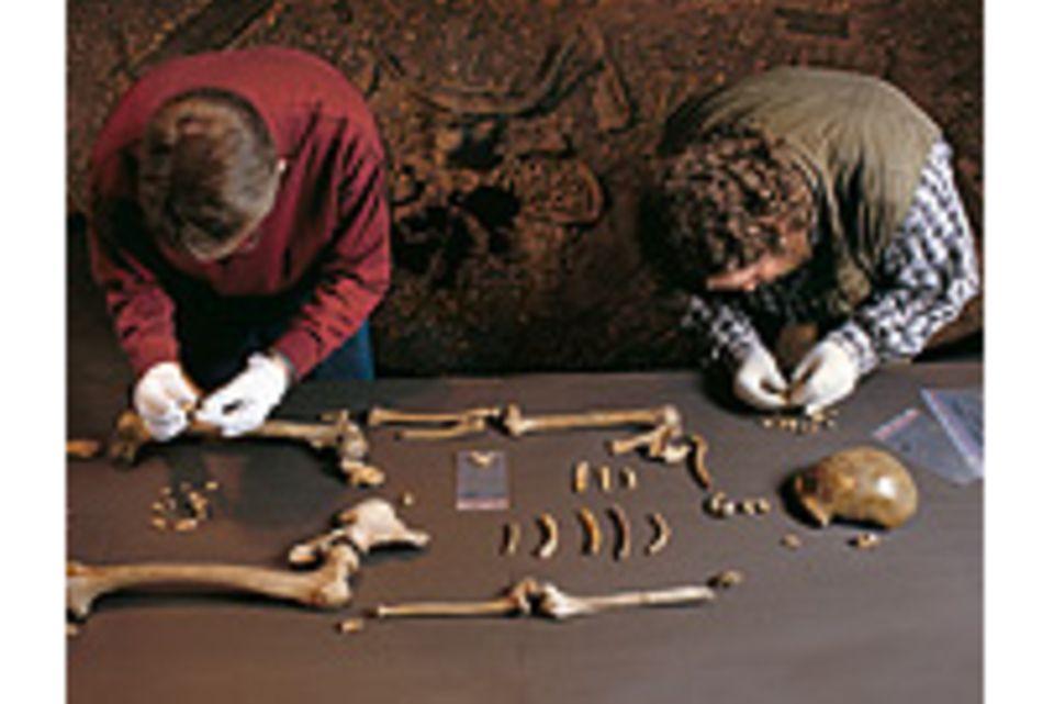 Neandertaler: Leseprobe: Jäger des verlorenen Schatzes