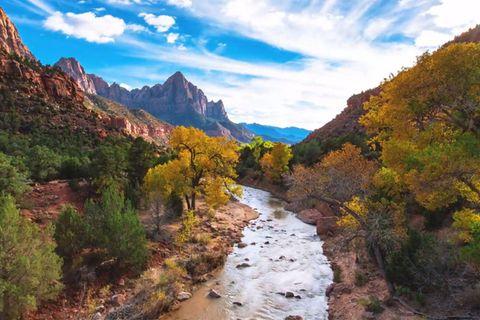 Video: In bester Nachbarschaft: Der Zion National Park