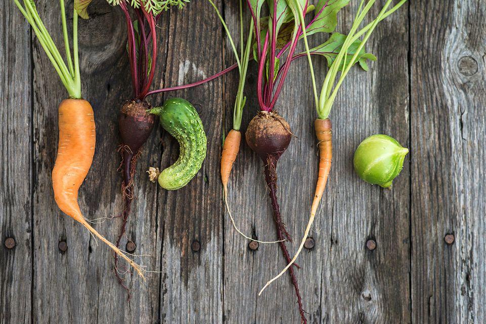 Weniger Verschwendung: Penny nimmt krummes Gemüse in sein Bio-Sortiment auf