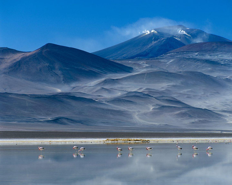 Fotogalerie zum Cover-Wettbewerb: Chile und Argentinien