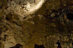 Fotogalerie: Höhlen - Forschung für die Medizin - Bild 3