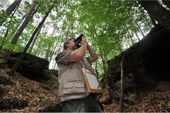 GEO-Tag der Artenvielfalt: Artenvielfalt im Pfälzerwald