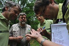 GEO-Tag der Artenvielfalt: Artenvielfalt im Pfälzerwald - Bild 2