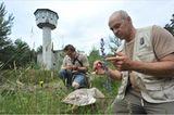 GEO-Tag der Artenvielfalt: Artenvielfalt im Pfälzerwald - Bild 5