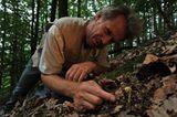GEO-Tag der Artenvielfalt: Artenvielfalt im Pfälzerwald - Bild 8