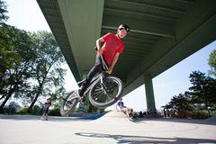 Radfahren: BMX: Sprung aufs Treppchen - Bild 4