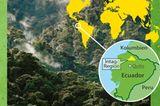 Naturschutz: Werde zum Waldretter!