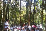 Naturschutz: Werde zum Waldretter! - Bild 11