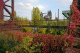 Volkspark des 21. Jahrhunderts