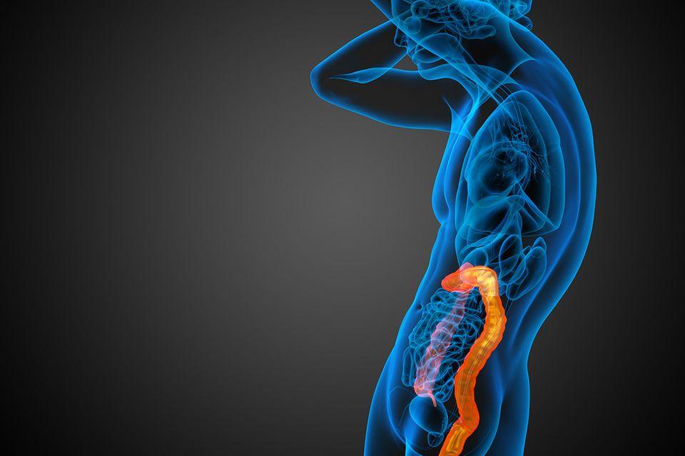 Ernährung: Wie das Fasten unseren Körper heilt