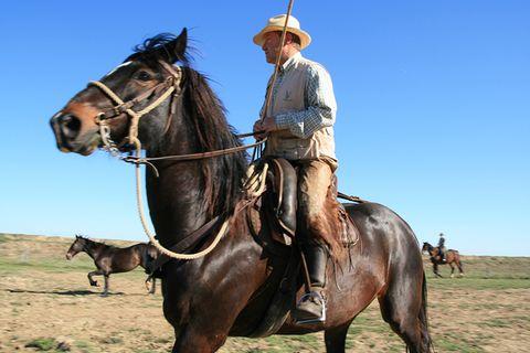 Die letzten Cowboys der Toskana