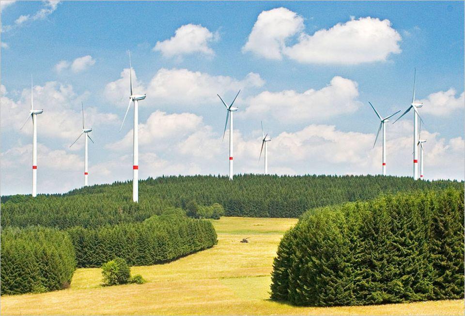 Erneuerbare Energien: Stein des Anstoßes: Windkraftanlagen in Rheinland-Pfalz
