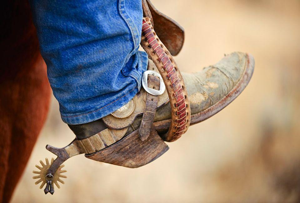 Redewendung: Wer sich seine Sporen verdienen will, muss gute Leistungen bringen