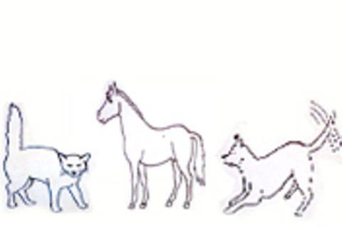 Die Sprache der Tiere
