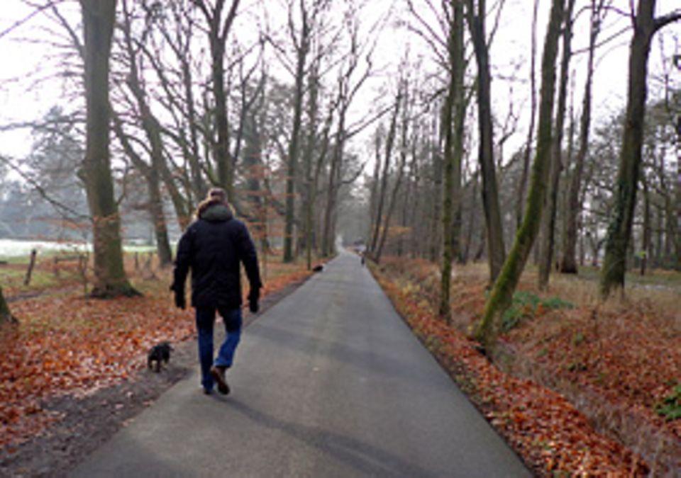 Beruf: Stundenlange Spaziergänge sind für Hund und Gassigeher Tim eine tolle Sache