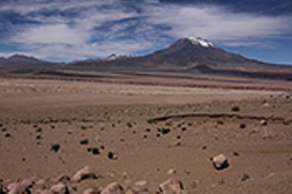Atacamawüste – Leben ohne Wasser