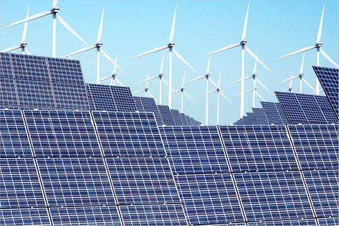 Umweltpolitik: Klimaschutz kontra Naturschutz