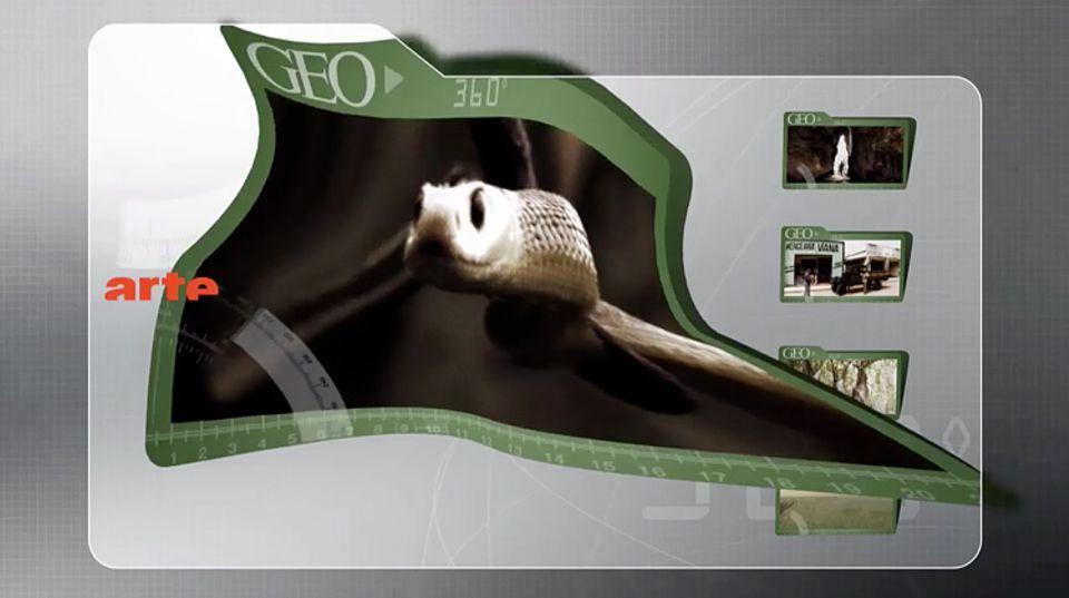 ARTE Creative stellte fünf Folgen der 360° GEO-Serie zur Verfügung