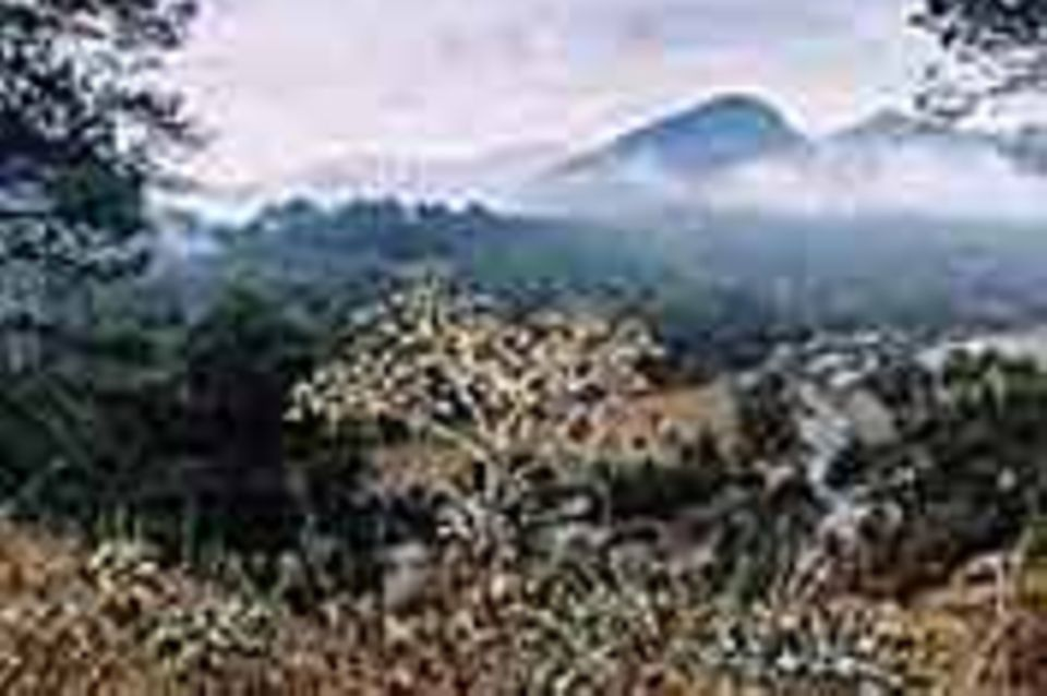 Sierra de Cazorla: Die Wildnis auf Wolkenhöhe