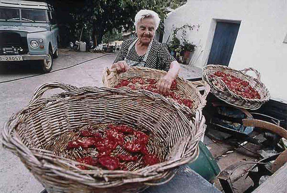 Reiche Ernte unter der Sonne: Doña Garcia aus dem Dorf La Capellania hat Tomaten getrocknet