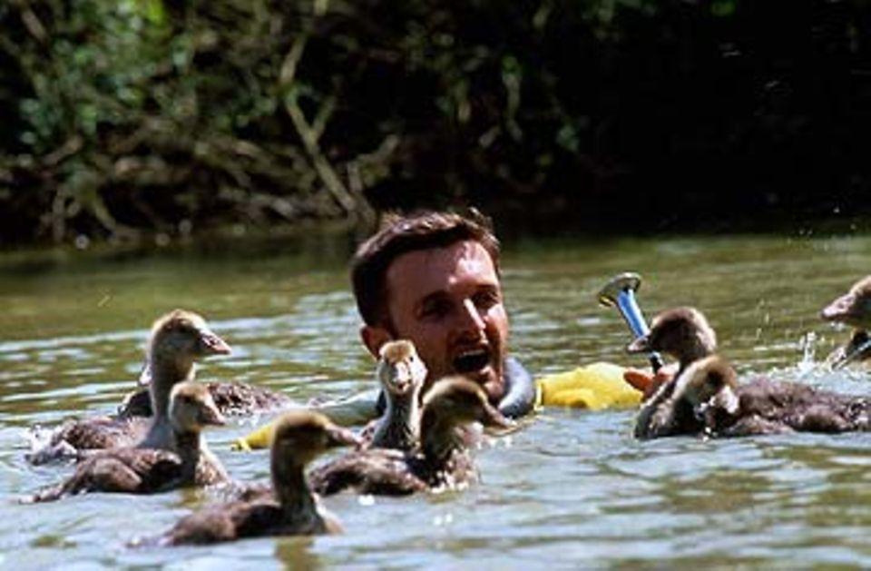 Galatée Films hat eine ornithologische Vogelschule eingerichtet, in der junge Biologen und Tierpfleger Enten, Schwäne und Gänse liebevoll aufziehen und ausbilden