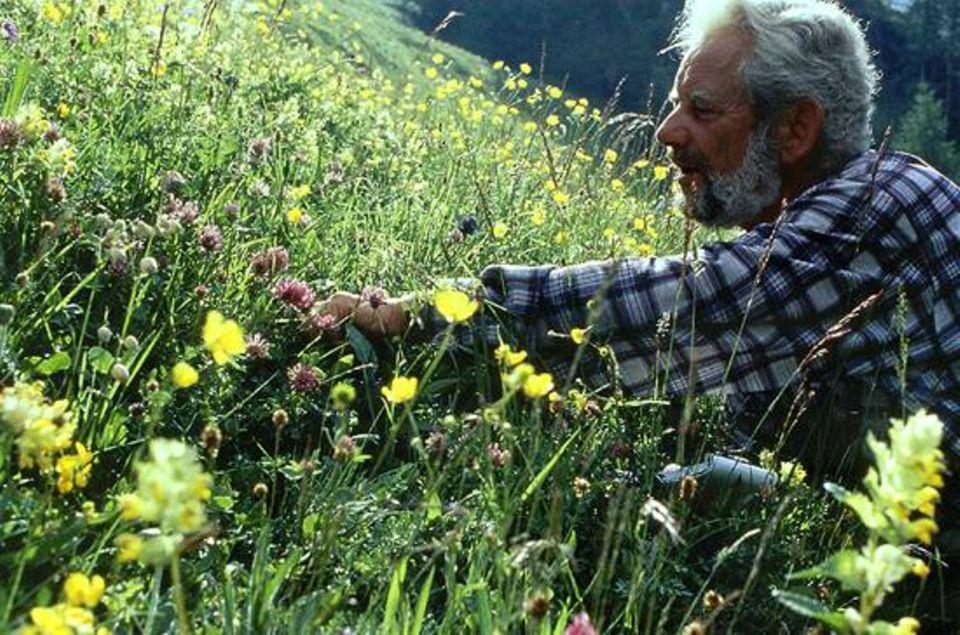 Auf einer Mähwiese der Alp Flix zählt Hans-Ulrich Hollenstein 30 Pflanzenarten im Zwei-Meter-Radius