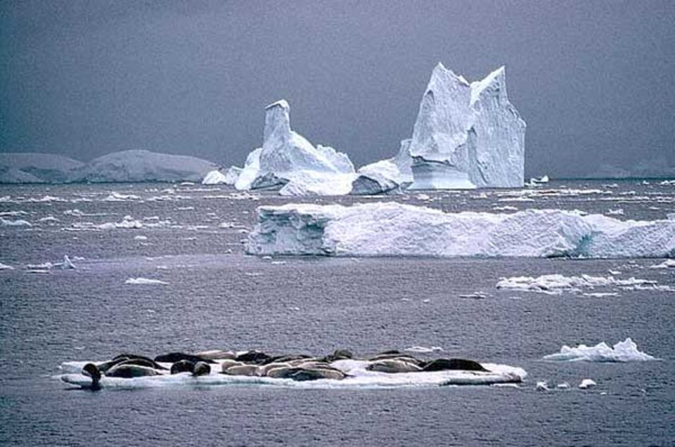Geowissenschaft: Eisiger Süden