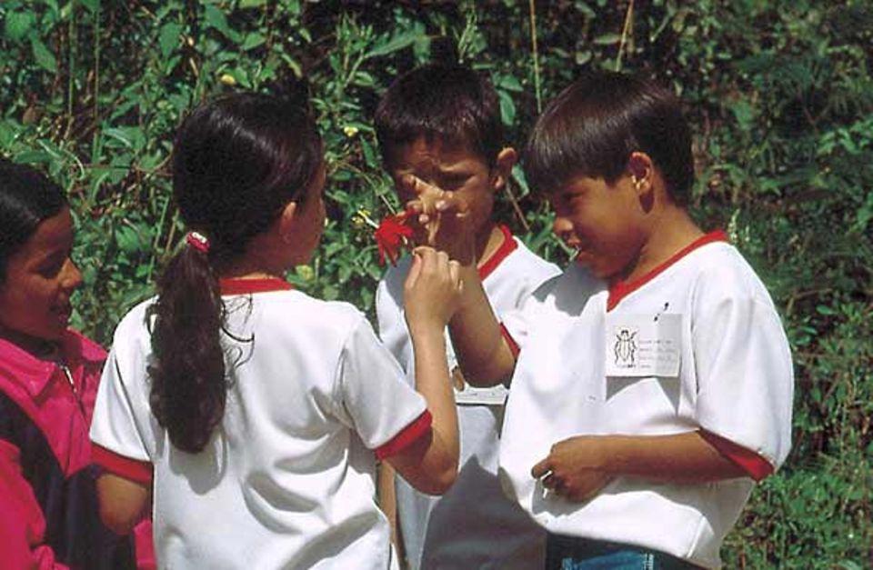 Der Tag der Artenvielfalt in Kolumbien
