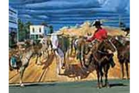 Murals: Wandgemälde in den USA