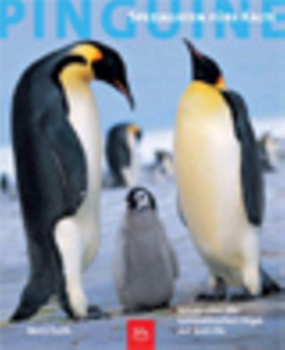 Buchtipps: Von Eis-Heiligen und Pinguinen